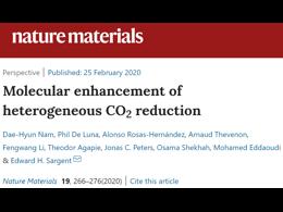 Edward H.Sargent院士Nature Materials:如何利用分子策略增强非均相CO2RR催化剂?