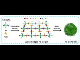 双管齐下:阳离子取代和阴离子空位协同催化OER